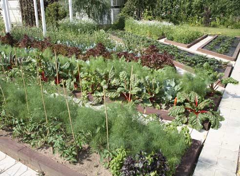Интересные поделки в саду и огороде фото 403