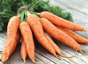 Когда сажать морковь в 2017 89