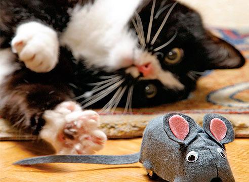 Как сделать мышку игрушку для кота своими руками