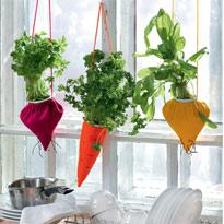 Кашпо для горшочков с зеленью на окне