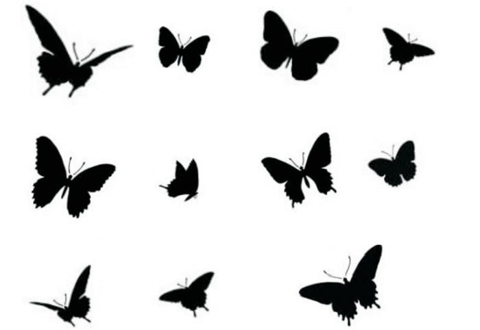 Мастер класс трафарет бабочки