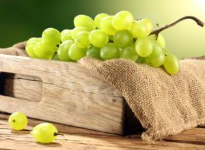 Как получить хороший урожай винограда Подсобное хозяйство
