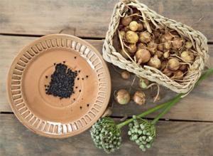 Рецепт сладких огурцов на зиму на 1 литр