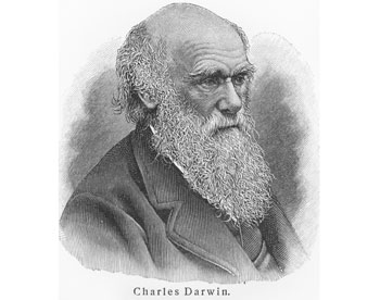 charles darwin and the theatre
