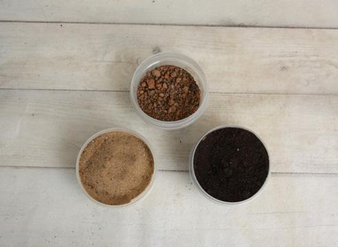 Размножение замиокулькаса делением. Почвенная смесь.