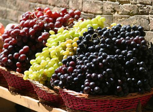 Ампелотерапия: лечение виноградом. Сорта винограда