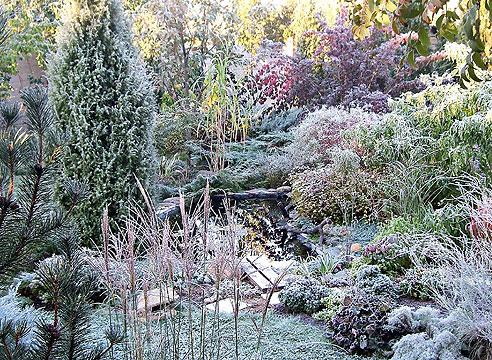 Сад Екатерины Баринской. Пруд в заморозки.