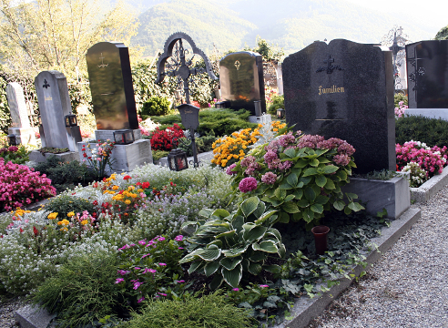Можно ли на кладбище сажать цветы из своего сада 80