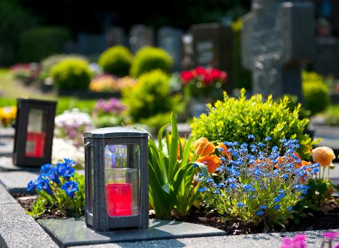 Цветы на кладбище сажать с