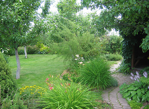 Сад Галины Дубовой
