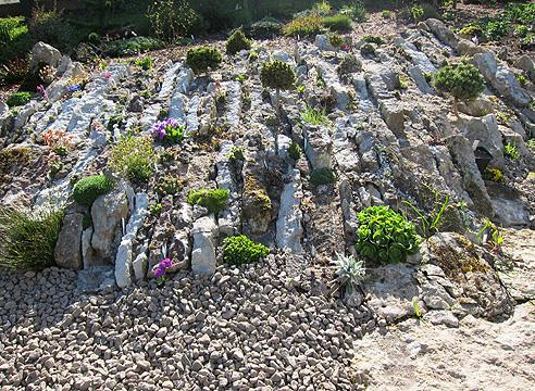 Сад Светланы Полонской, альпинарий, алпийская горка