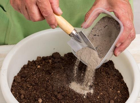 выращивание рассады капусты, приготовление почвы для пикировки рассады