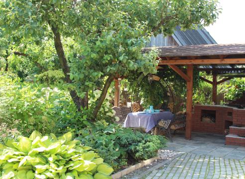 Сад Екатерины Локшиной, идеи для сада, зона отдыха, мангал, Летняя кухня