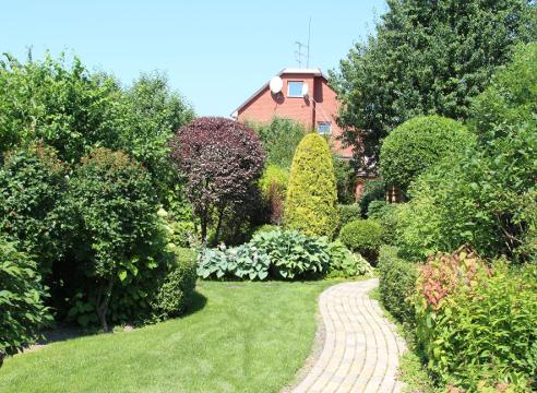 Сад Екатерины Локшиной, Вид из сада на дом, красивое сочетание растений