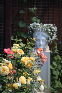 Сад Екатерины Локшиной, идеи для сада, дизайн сада, садовые скульптуры
