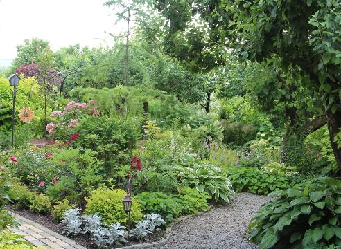 Сад Екатерины Локшиной, Цветник в зоне отдыха, идеи для сада, сочетание растений, клумба, декоративные многолетники, дизайн сада