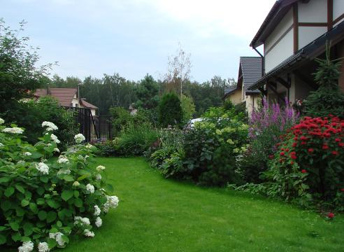 Сад Галины Скалкиной, идеи для сада, цветники, монарда и вероникаструм