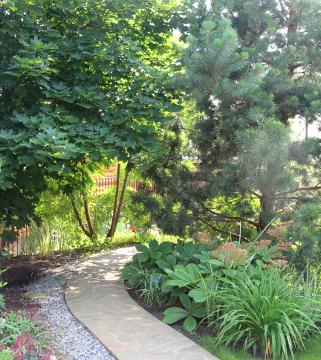 Сад Галины Скалкиной, идеи для сада, дизайн сада, деревья в саду
