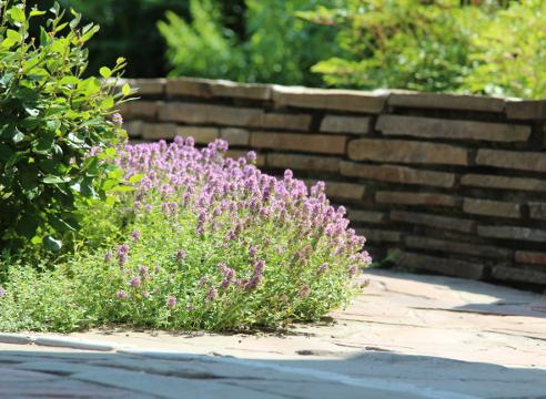 Сад Дмитрия Патрикеева, идеи для сада, дизайн сада, цветники, высокая клумба, мощение, бордюр, каркасный цветник, приподнятый цветник, приподнятый цветник, камень в саду, каменная кладка, подпорная стенка