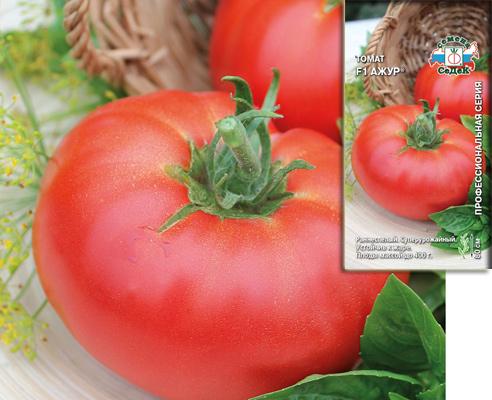 томат Ажур F1, семена овощей, сорта СеДеК