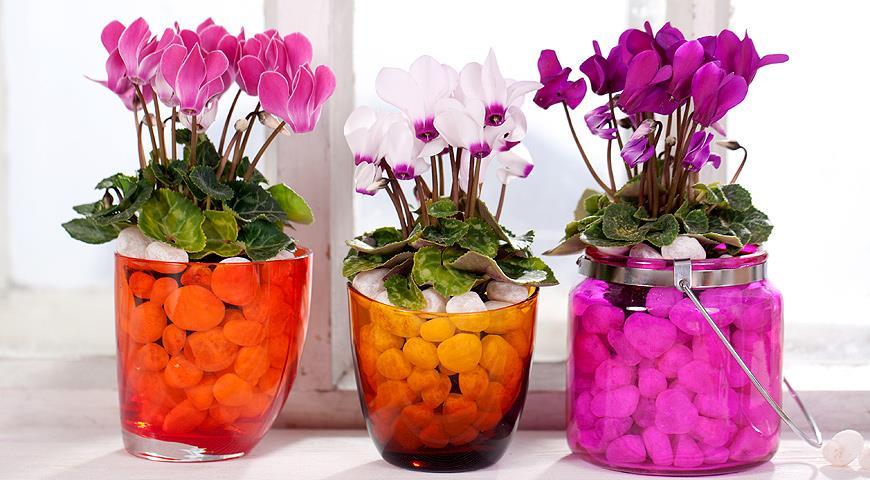 Цветы  мастер класс фото 5
