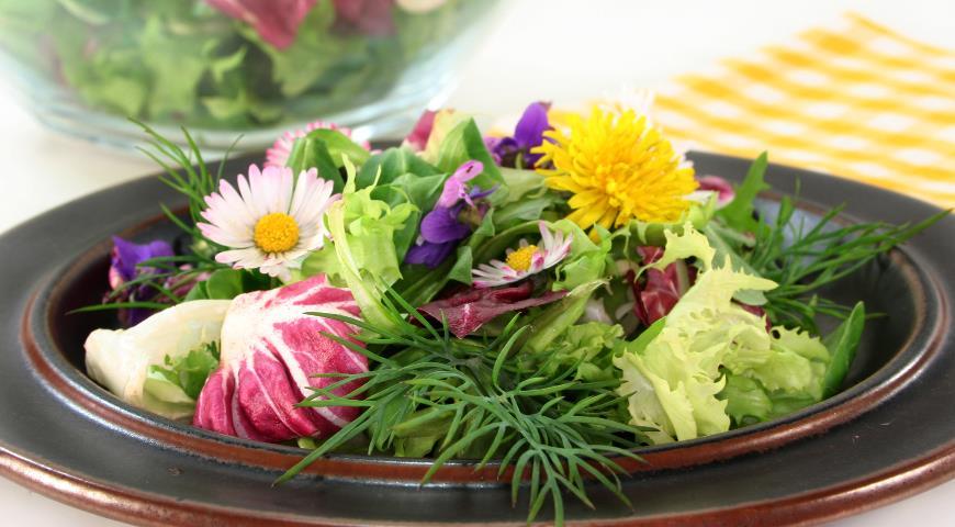 зеленый салат, первая зелень, рецепты