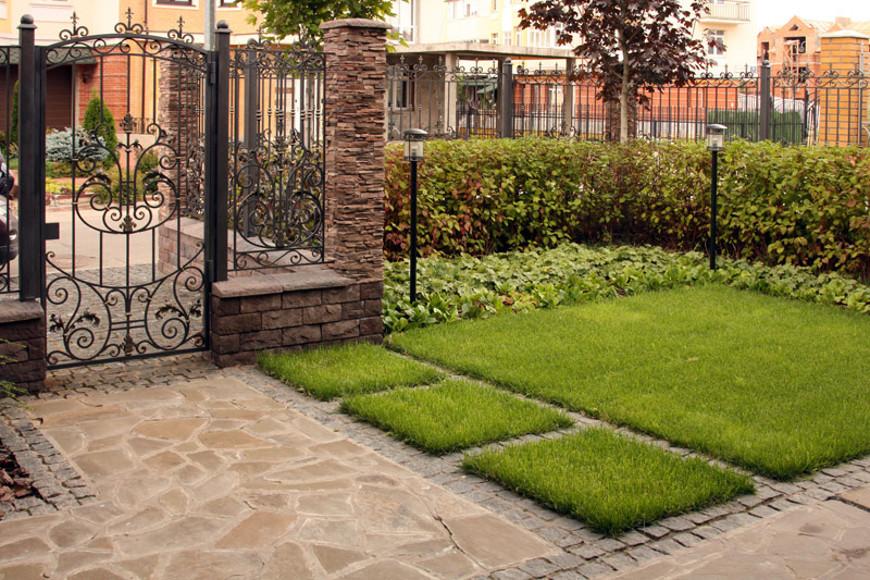 Сад про проекту Светланы Чижовой
