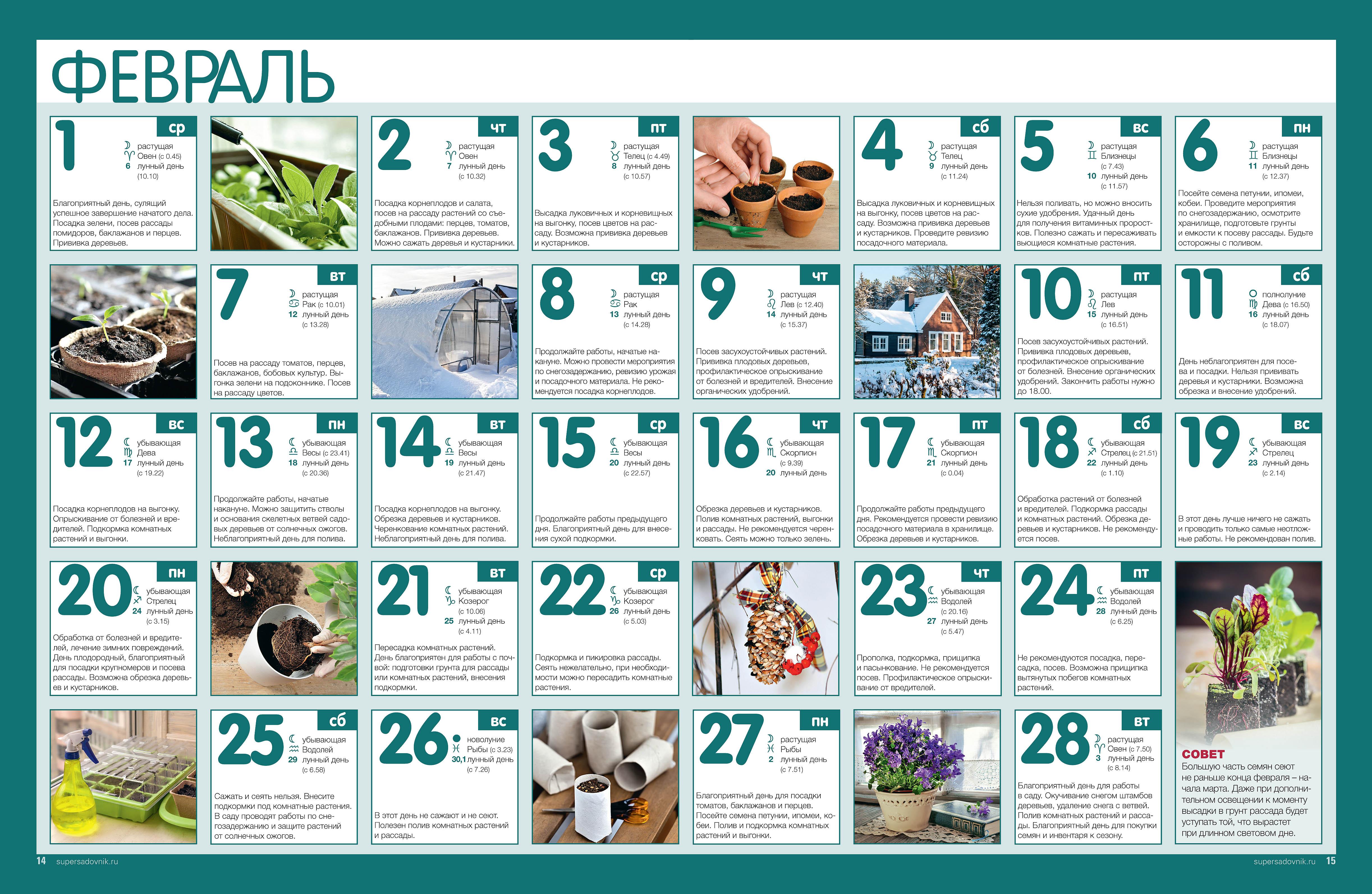 Какие мероприятие на выходные в москве