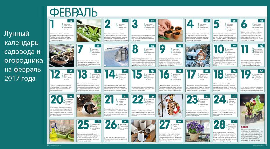 Календарь на 2016 2017 учебный год для учителя украина