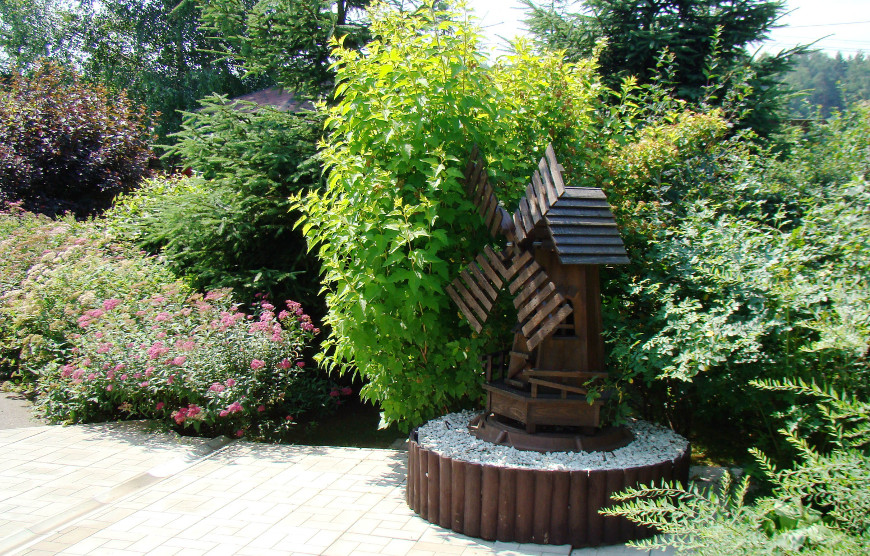 Сад Светланы Спиридоновой