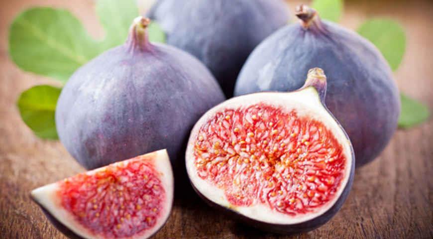Картинки по запросу Самое вкусное лекарство — инжир!