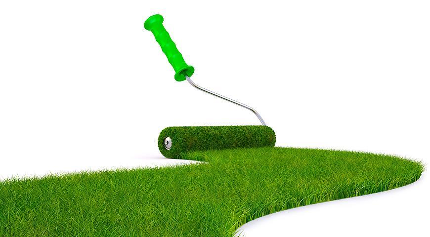 Какой газон выбрать: посевной или рулонной? Все ЗА и ПРОТИВ обоих вариантов с ценами
