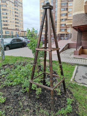 Садовый обелиск для клематиса своими руками