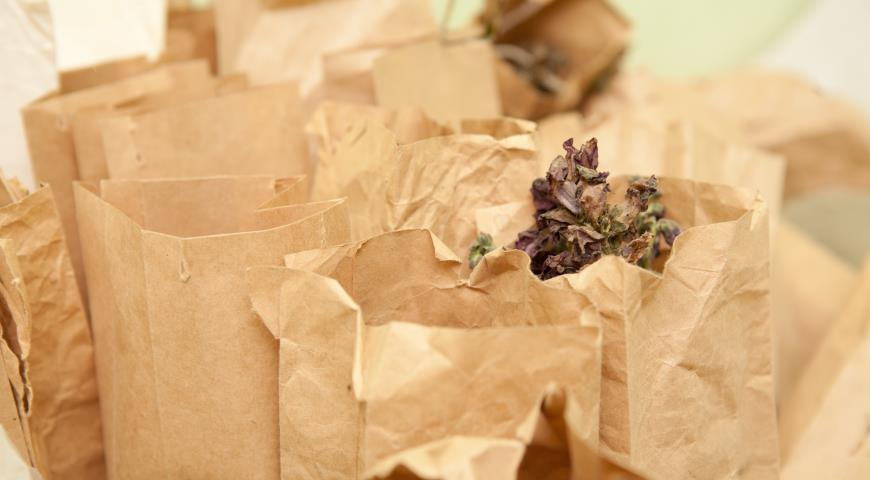 Собираем и заготавливаем свои семена: какие, где, когда и как