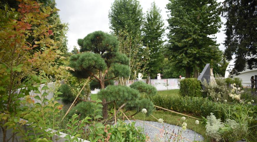 """Фестиваль """"Сады и люди"""", сад """"Молодость. Альтрейн"""""""
