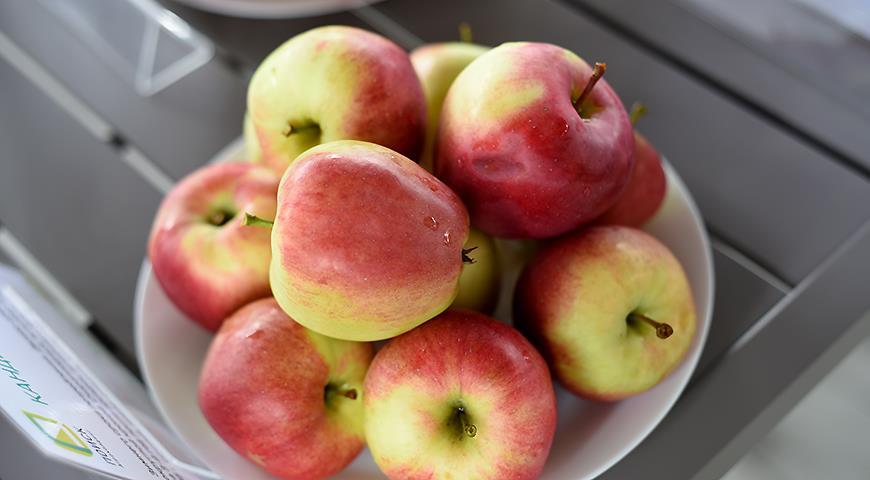 10 самых вкусных сортов яблок на дегустационном марафоне