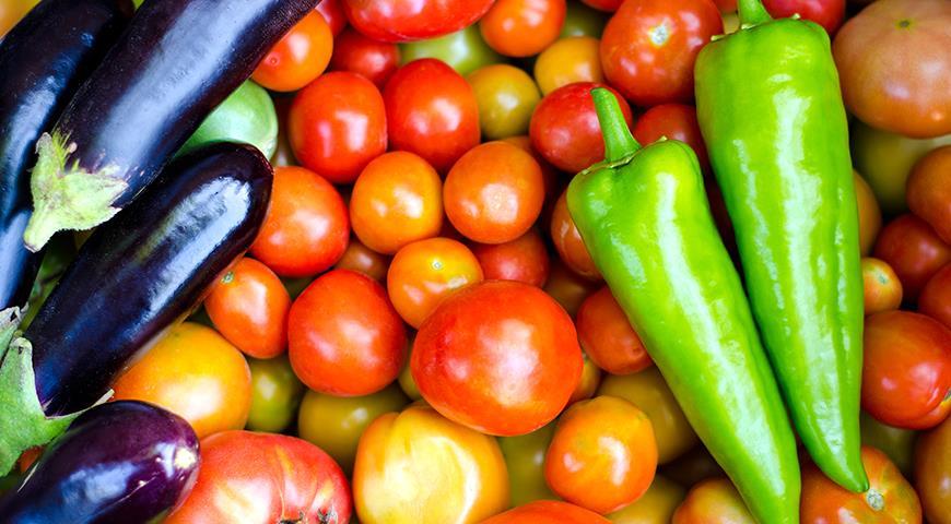 Семена томатов, перцев и баклажанов: краткая подсказка по выбору сортов овощей для посева на рассаду