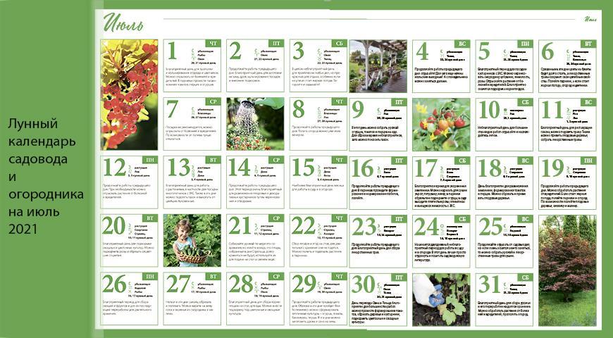 Лунный посевной календарь садовода, цветовода и огородника на июль 2021 года
